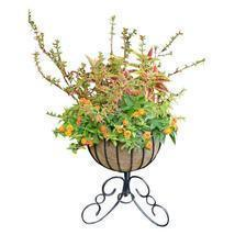 Classic Urn Free Standing Planter and Coco Liner Set - $67.99+