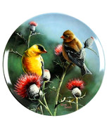 Vintage Bird Wall Plate, Yellow Goldfinch Plate, Birds of Your Garden - $14.99