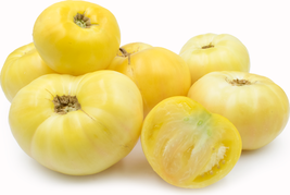 Tomato Seeds - Great White - Vegetable - Outdoor Living - Garden -FREE SHIPP - $38.99+