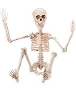 "19"" Full Body Halloween Skeleton with Movable Joints for Halloween Decor... - $19.37"