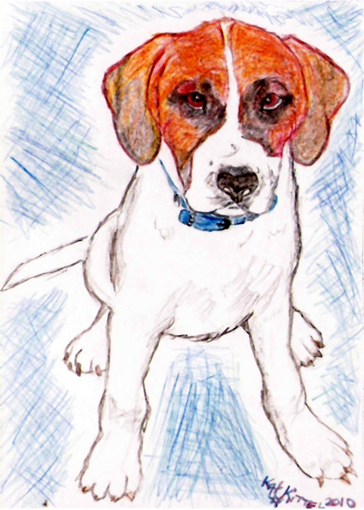 Order 4 Vahorsenut 3 colored pencil drawings of her dogs image 3