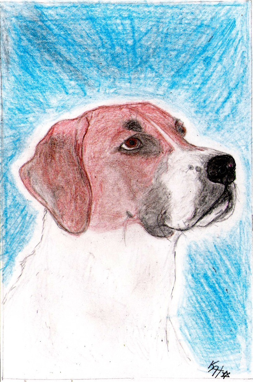 Order 4 Vahorsenut 3 colored pencil drawings of her dogs