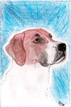 Order 4 Vahorsenut 3 colored pencil drawings of her dogs image 1
