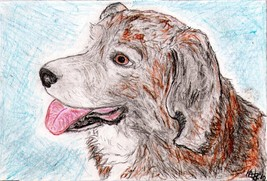 Order 4 Vahorsenut 3 colored pencil drawings of her dogs image 2