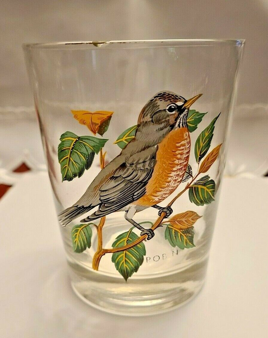 VINTAGE HAND PAINTED ROBIN OLD FASHION GLASS West Virginia Glass Spec.