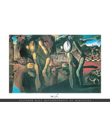 Salvador Dali Poster Metamorphosis of Narcissus 36 x 24 inches 61x90 cm - $19.99