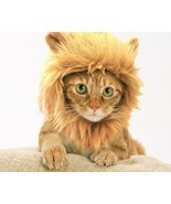Prymal Lion Mane Dog Cat Costume - £15.92 GBP