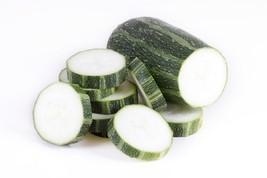 Squash Summer Zucchini Italian Striped/Mexican Cocozelle Non GMO 25 Seeds - $1.97