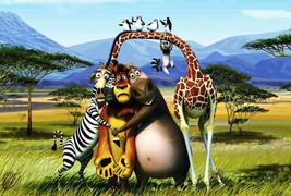 Madagascar  5 x 7 Color Photo image 1