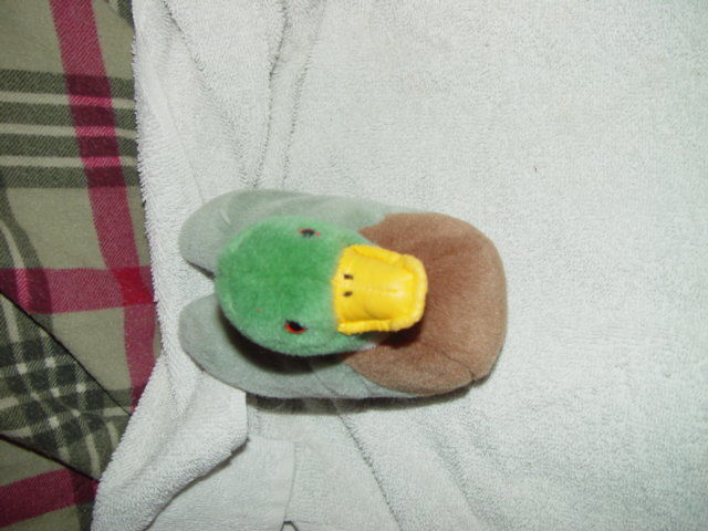 Duck Beanbag Plush 5 x 6 image 3