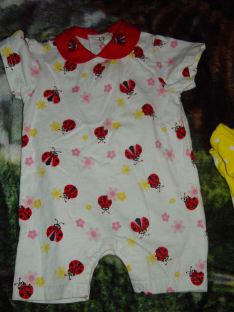 Carter's and Toffee Apple 6 Months Ladybug Girls Outfit image 8