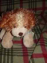 Webkinz Ganz Cocker Spanie With Tag image 7