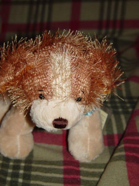 Webkinz Ganz Cocker Spanie With Tag image 8