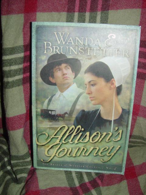 Allison's Journey  Wanda & Brunstetter Book # 4  by Wanda E. Brunstetter image 2