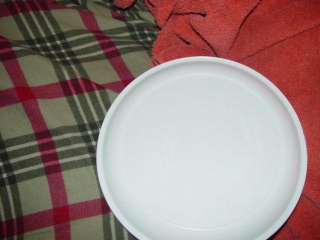 Dolly Pardon DollyWood Plastic Souvenir Plate image 5