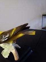 Vintage W. Goebel Bird Pirol Golden Oriole Loriot image 5