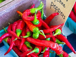 1 Ounce Cayenne Pepper, Whole Dried , Delicious Fresh Spicy Dried Herb - Garden - $25.00