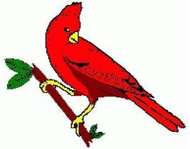 Cardinal thumb200