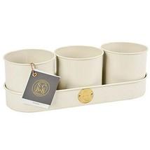 Burgon & Ball Sophie Conran Galvanised Steel Set of 3 Herb Plant Pots in... - $53.51