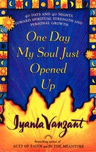 One Day My Soul Just Opened Up - by Iyanla Vanzant - $6.00