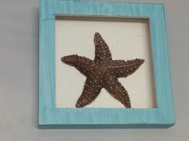NEW Blue w Dark Brown Resin Starfish Shadow Box image 2
