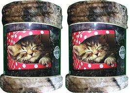 American Heritage Plush Raschel Throw 50x60 Kitten in Polka Dot Box 2-Pack - $48.95