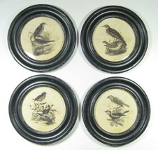 "Round Black Framed Bird Wall Prints Set of 4 Wall Art  9.75"" Diameter - $124.69"