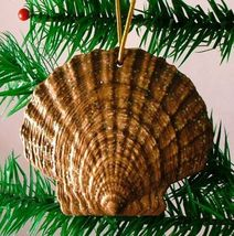 Tropical Beach Seashell Christmas Ornament Dark Brown ORNShell16 Resin - $15.76
