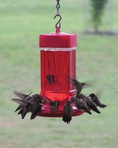 Innovative 32-ounce Hummingbird Feeder Durable Polymer Wide Mouth Reservoir - $15.39