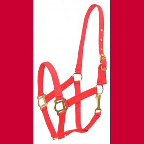 COB Arab Nylon Halter Classic NEW!  Red