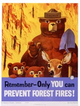 SMOKEY BEAR POSTER | 24 x 36 INCH | REMEMBER - $18.99