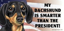 MY DACHSHUND IS SMARTER THAN THE PRESIDENT! USA FLAG Car Fridge Dog Magn... - $6.76