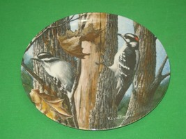 The Downy Woodpecker Collector Plate 1987 Knowles Kevin Daniel Plate No ... - $12.16