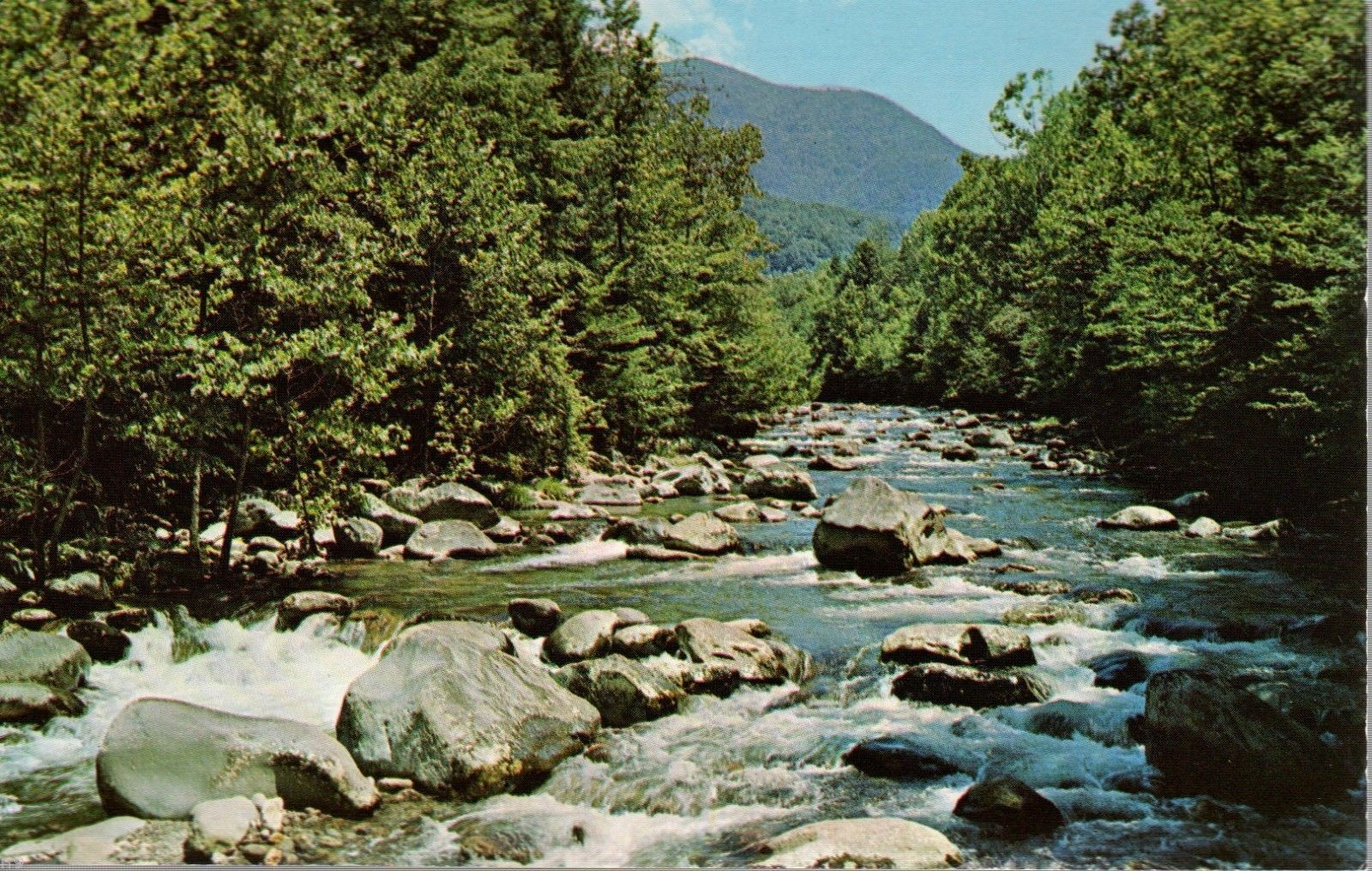 Primary image for Little Pigeon River - Great Smoky Mountains National Park - Postcard