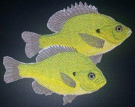 Nature's Bounty Beautiful Custom Fish Portraits[ Sun Fish ] Embroidered ... - $11.87