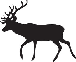 Hunt Decal #Ht1/63 Deer Rack Horns Shotgun Rifle Hunting Bow Car Truck Suv Auto - $7.00