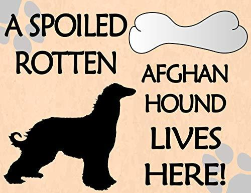 Primary image for Top Shelf Novelties A Spoiled Rotten Afghan Hound Lives Here! (Silhouette) Lamin
