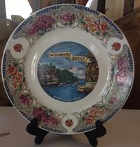 Vintage Wisconsin Dells Souvenir Plate Kitsch Rose Transferware Cliffs Boats