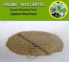 POWDER Gynura Divaricata Tuber Organic Wild Crafted Fresh Natural Herbs - $17.99+