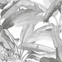 Polynesian Leaves Wallpaper Black and white Norwall Wallcovering MH36533 - $34.64