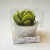 """Succulent Shaped Candles, 2.6"""", Love Grows, Happy Place, Live What You Love image 6"""
