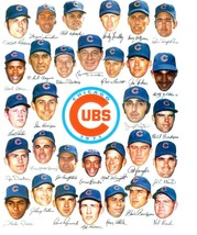 1971 CHICAGO CUBS 8X10 TEAM PHOTO BASEBALL MLB PICTURE - $3.95