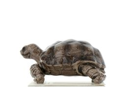 Hagen Renaker Miniature Turtle Tortoise Desert Ceramic Figurine image 3