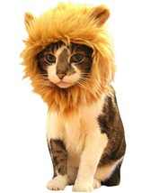 Lion Mane Cat Wig & Small Dog Costume with free cat toy! Ships fast to you! - £7.74 GBP