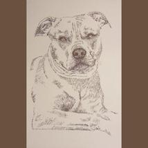 Pit Bull Terrier #2 DOG ART Kline Signed Print ... - $59.95