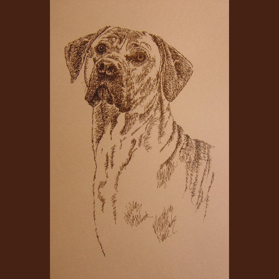 Rhodesian Ridgeback DOG ART Kline Signed Print - Your dogs name added free. GIFT Bonanza