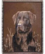 70x50 Chocolate LABRADOR Dog Tapestry Throw Afghan Blanket - $48.50