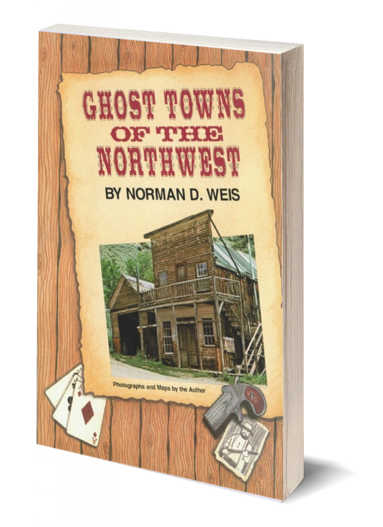 3d ghost towns of the northwest