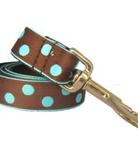 Candy Dot: Aqua on Brown Grosgrain Dog Leash (120cm, 4ft.) / Made in Japan - $36.00