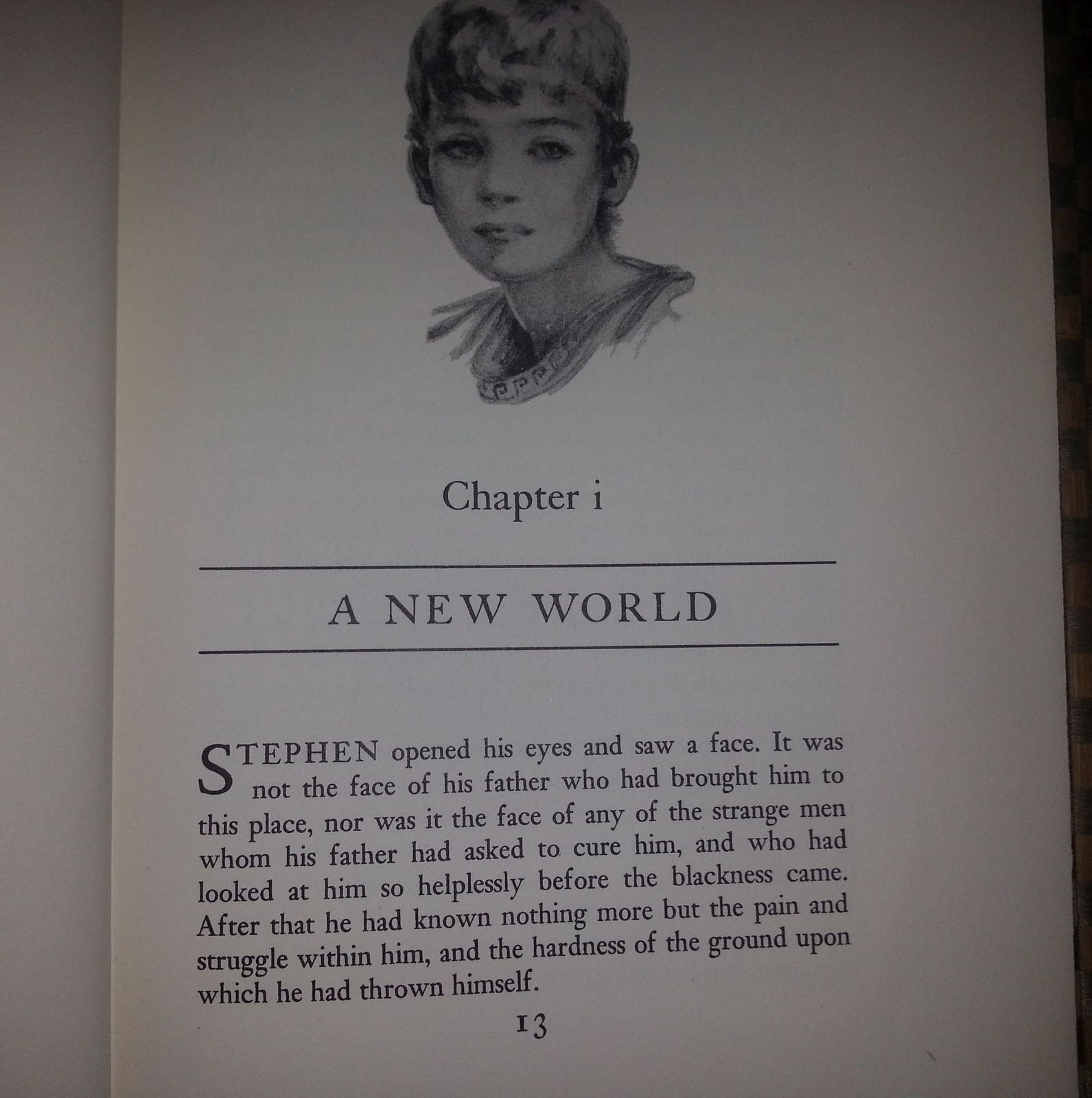 STEPHEN Boy of the Mountains by Amy Morris Lillie 1967 HBDJ
